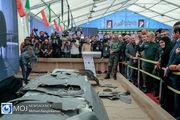 افتتاح نمایشگاه شکار کرکسها
