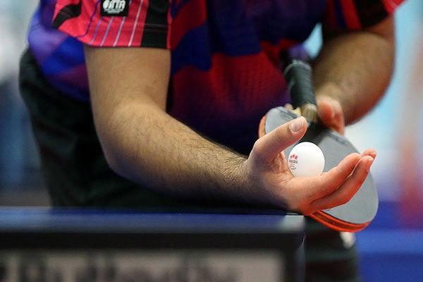 امین احمدیان مجوز حضور در المپیک را گرفت