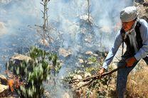 آتشسوزی در «جنگل فندقلو» با تلاش محیط بانان مهار شد