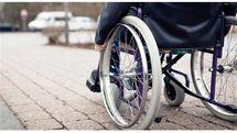معلولیت موجب نقص کمال نیست / دیدگاه سالمسالاری جامعه تصحیح شود