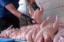 توزیع مرغ منجمد با قیمت 5700 در کشور/ پرتقال خارجی 3900 تومان در ترهبار