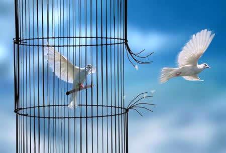 آزادی ۱۳۵ زندانی غیر عمد در هرمزگان