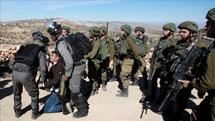 Zionist Regime forces arrested 15 Palestinians in West Bank