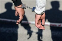باند سرقت احشام ایلام دستگیر شدند