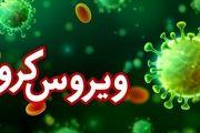 مبتلا شدن 73 بیمار جدید به ویروس کرونا در منطقه کاشان / مرگ 4 بیمار