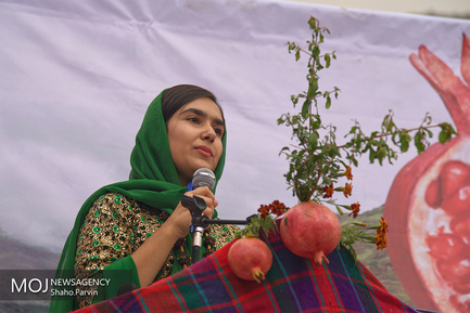 نخستین جشنواره انار هورامان در روستاهای کردستان