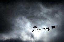 زمستان گذرانی ۵۰ هزار پرنده مهاجر به تالاب میانکاله