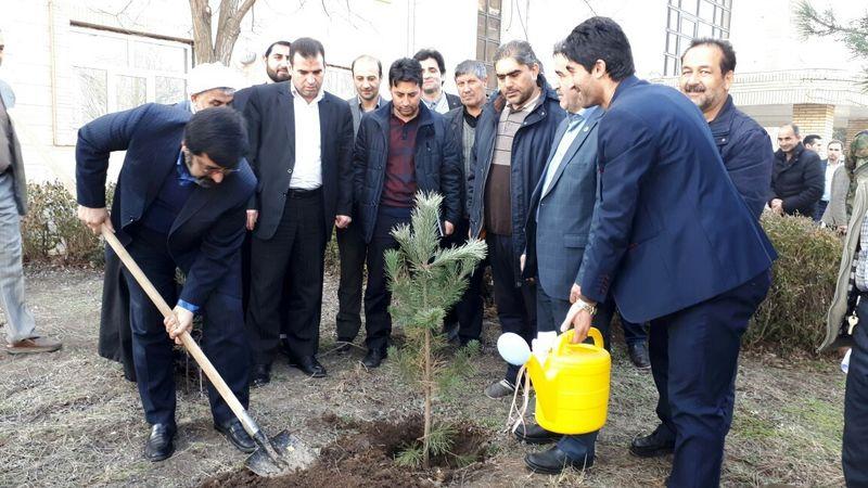 غرس بیش از ۲میلیون اصله نهال در استان اردبیل