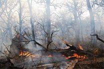 آتش سوزی جنگلهای بوکان با یک کشته پایان یافت
