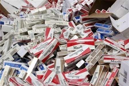 کشف بیش از ۶۰۰ هزار نخ سیگار قاچاق در بستک