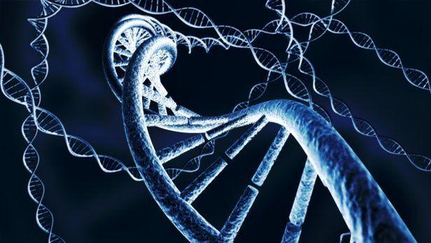 سرمایهگذاری 65 میلیون دلاری دارپا در توسعه فناوریهای ویرایش ژن