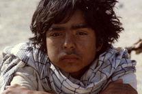 نسخه مرمتشده فیلم امیر نادری در تلویزیون