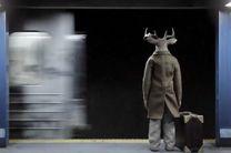 انیمیشن آقای گوزن به 3 جشنواره خارجی راه یافت