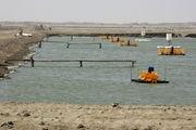 میناب مستعد تبدیل شدن به قطب  پرورش ماهی خاویاری