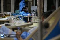 فوت ۹ نفر بر اثر ویروس کرونا در ۲۴ ساعت گذشته