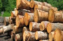 کشف 10 هزار کیلو چوب قاچاق در خمینی شهر / دستگیری 2 نفر توسط نیروی انتظامی