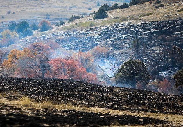 سوختن ۲ نقطه جنگلی در استان گلستان