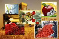 ایجاد تسهیلات ویژه برای نوسازی واحدهای صنایع غذایی و کشاورزی