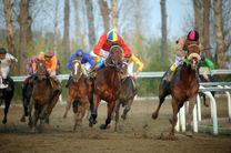 هفته ششم کورس اسبدوانی تابستانه بندرترکمن برگزار شد