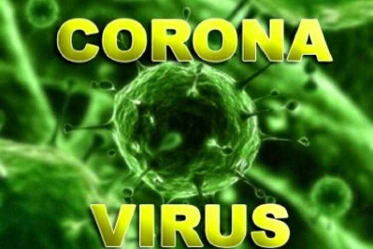 اولین نمونه از کیت ایرانی تشخیص ویروس کرونا تولید شد