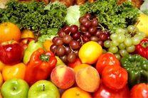 ۱۱۷ میلیون تن محصولات کشاورزی تولید می شود