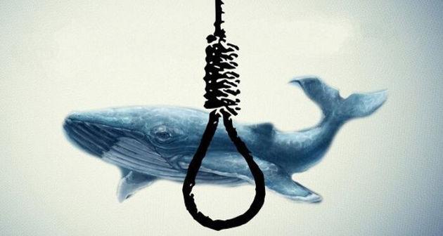فیلم سینمایی نهنگ آبی تولید می شود