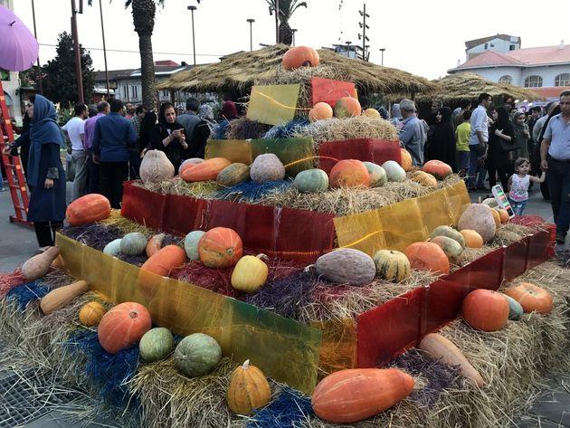 جشنواره «کدو» در قائم شهر برگزار می شود