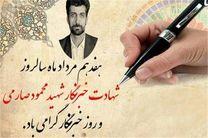 بنیاد بین المللی شهید صارمی راه اندازی می شود