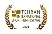 ثبت نام ۶۴۰۲ فیلم خارجی در جشنواره بینالمللی فیلم کوتاه تهران