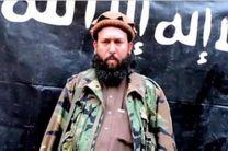 جانشین «حافظ سعید» سرکرده سابق داعش در افغانستان تعیین شد