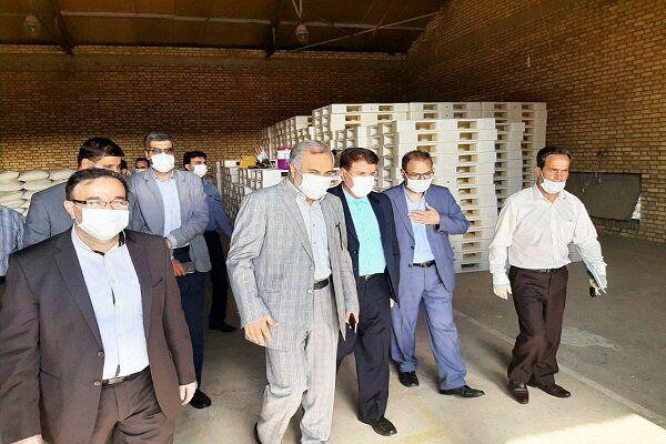 تولید ۴۰۰ هزار تن دانههای روغنی در سال جاری/افتتاح نمایندگی اداره غله شهرستان نهاوند