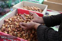 انبار بزرگ احتکار خرما در کرمانشاه کشف شد