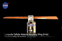 پروژه جدید ناسا؛ باله هایی با قابلیت تغییر شکل