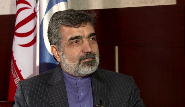 نشست سخنگوی سازمان انرژی اتمی به صورت زنده از شبکه خبر پخش می شود