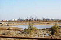 خطر نشت نفت  تالاب هورالعظیم را تهدید می کند
