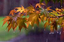 شروع بارش باران از دوشنبه برای خوزستانی ها
