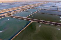 ورود دستگاه قضاء به موضوع تصرف اراضی و صادرات خاک جزیره هرمز