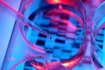 سرمایه گذاری 100 میلیون دلاری توسعه فناوری های انقراض ژنتیکی