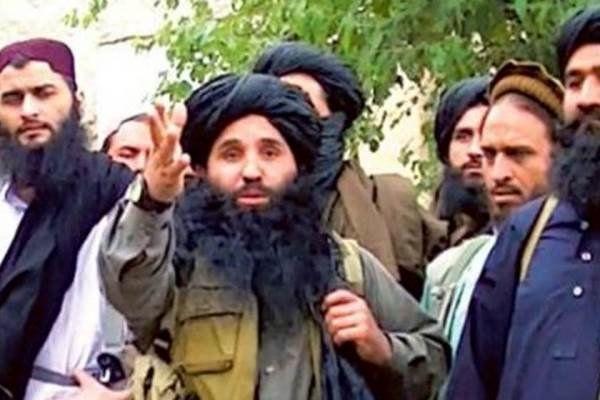 سرکرده طالبان پاکستان به هلاکت رسید