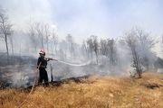 کاهش 95 درصدی آتش سوزی پارک های جنگلی سنندج در سال گذشته