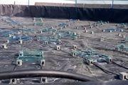 افزایش بهینه تولید با پرورش میگو متراکم
