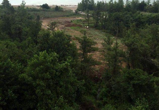 بیش از ۴۶۱ هکتار از عرصههای منابع طبیعی گلستان خلع ید شد