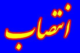 مدیرکل دفتر امور شهری و شوراهای استانداری اصفهان منصوب شد