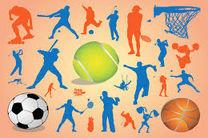 ورزش در ایران، به محصولات الکترونیکی نیاز دارد