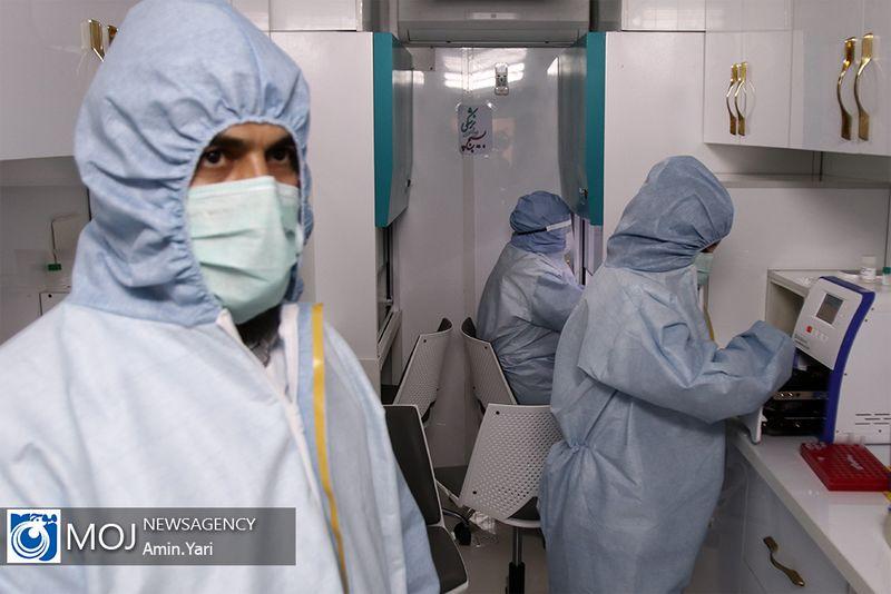 کشف یک روش جدید برای کاهش شدت ابتلا به ویروس کرونا