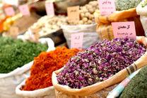 کاهش ۸۰ درصدی گیاهان دارویی در خراسان رضوی، بدلیل خشکسالی