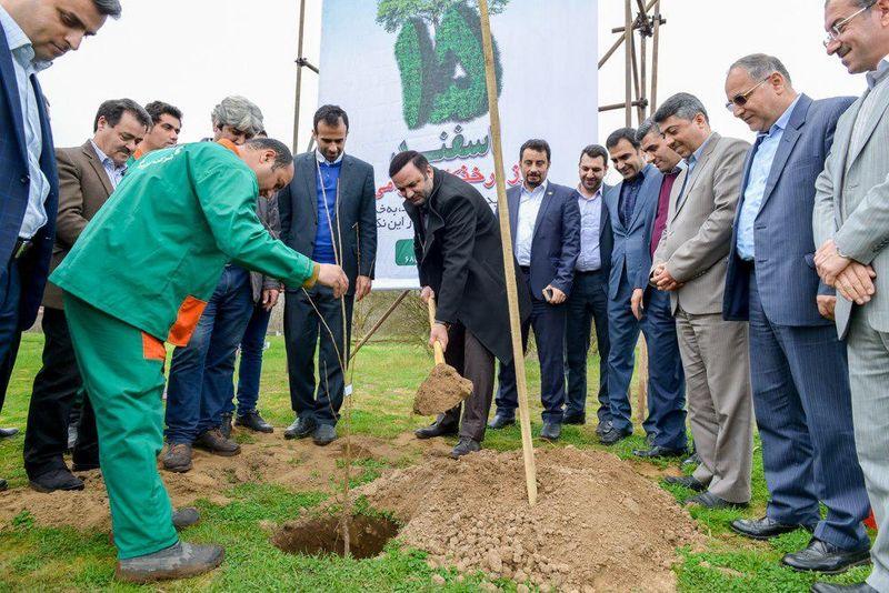 توزیع 7000 اصله نهال در  منطقه آزاد انزلی