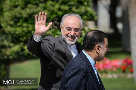علی اکبر صالحی رییس سازمان انرژی اتمی