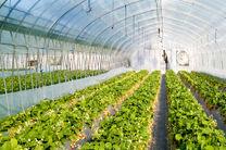 ایجاد گلخانه های خود پایدار در اصفهان پیگیری شود