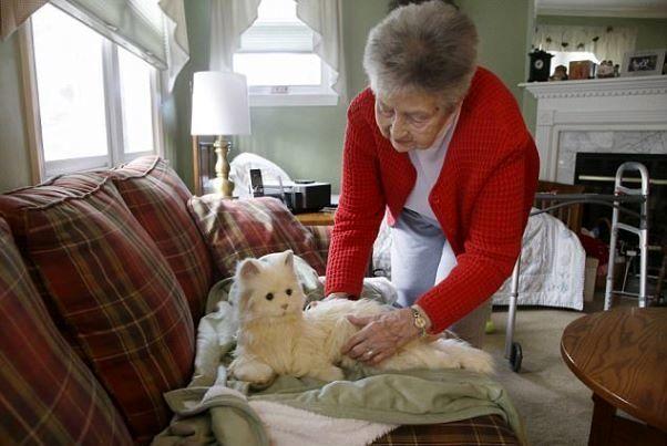 گربه ای که خوردن دارو را یادآوری می کند